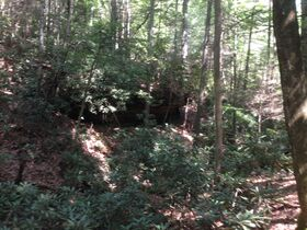 Online Only 360 acres adjoining the Big South Fork National Park in 6 tracts from 16 ac to 91 ac each featured photo 10
