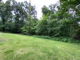 Home & 7.76 +/- Wooded Acres For You to Roam - Sells to High Bidder - Holts Summit, MO featured photo 10