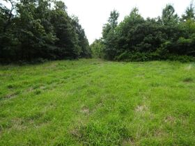 323 ACRES - TIMBER - Selling in Parcels - Online Bidding Ends TUE, SEPT 28 @ 3:00 PM CDT featured photo 2