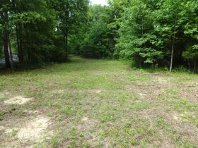 323 ACRES - TIMBER - Selling in Parcels - Online Bidding Ends TUE, SEPT 28 @ 3:00 PM CDT featured photo 8