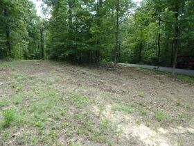 323 ACRES - TIMBER - Selling in Parcels - Online Bidding Ends TUE, SEPT 28 @ 3:00 PM CDT featured photo 9
