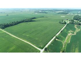 ABSOLUTE AUCTION 76.5 +/- ACRES IN BARTON TWP. - LIVE/Simulcast Auction FT. Branch, IN featured photo 4