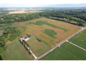 145+/- Acre Land Auction - Posey County, IN featured photo 3