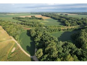 145+/- Acre Land Auction - Posey County, IN featured photo 5