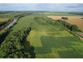 145+/- Acre Land Auction - Posey County, IN featured photo 6