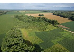 145+/- Acre Land Auction - Posey County, IN featured photo 7