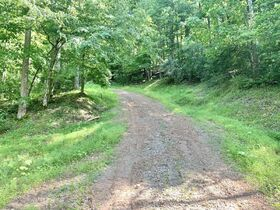 170 Acre Hunting Camp with Timber featured photo 2