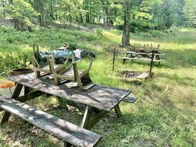170 Acre Hunting Camp with Timber featured photo 8