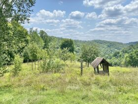 Secluded Timber Framed Home, Horse Barn, 34 Acres featured photo 8