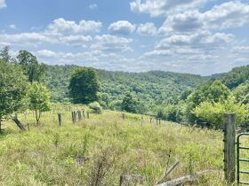 Secluded Timber Framed Home, Horse Barn, 34 Acres featured photo 9