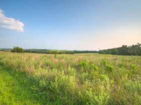 PAYNE COUNTY LAND AUCTION-160 ACRES SOUTHWEST STILLWATER/COYLE RD AREA featured photo 4