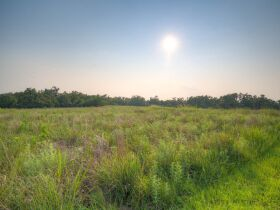 PAYNE COUNTY LAND AUCTION-160 ACRES SOUTHWEST STILLWATER/COYLE RD AREA featured photo 6