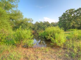 PAYNE COUNTY LAND AUCTION-160 ACRES SOUTHWEST STILLWATER/COYLE RD AREA featured photo 10