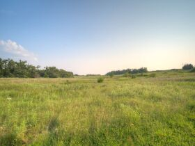 PAYNE COUNTY LAND AUCTION-160 ACRES SOUTHWEST STILLWATER/COYLE RD AREA featured photo 11