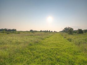 PAYNE COUNTY LAND AUCTION-160 ACRES SOUTHWEST STILLWATER/COYLE RD AREA featured photo 12