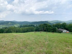 Barbour County Home on 74 Acres featured photo 2