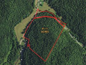 Absolute 41 Acre Gilmer County Land featured photo 1