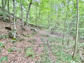 Absolute 41 Acre Gilmer County Land featured photo 8