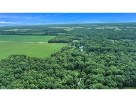 12 Acre Sportsman's Paradise with Home & Outbuildings, Calhoun County featured photo 7