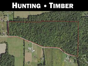 58 +/- Acre Orange County Land Online Only Auction featured photo 1