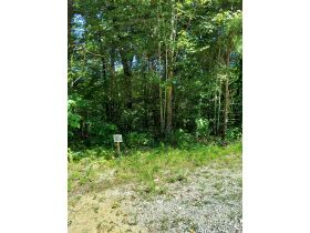 Bear Creek Resort Lots at Absolute Online Only Auction featured photo 3