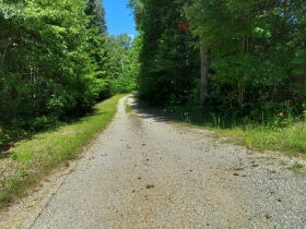 Bear Creek Resort Lots at Absolute Online Only Auction featured photo 2