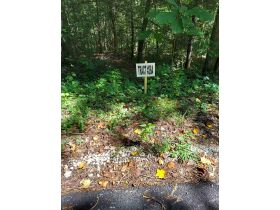 Bear Creek Resort Lots at Absolute Online Only Auction featured photo 5