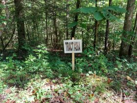 Bear Creek Resort Lots at Absolute Online Only Auction featured photo 6