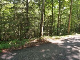 Bear Creek Resort Lots at Absolute Online Only Auction featured photo 7