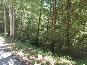 Bear Creek Resort Lots at Absolute Online Only Auction featured photo 9