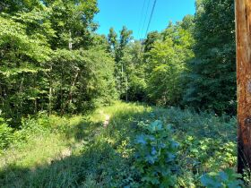 Bear Creek Resort Lots at Absolute Online Only Auction featured photo 12
