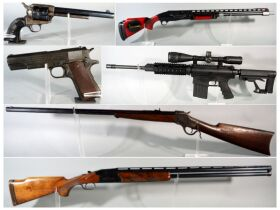 Aim To Win Firearm And Sportsman Auction featured photo 2