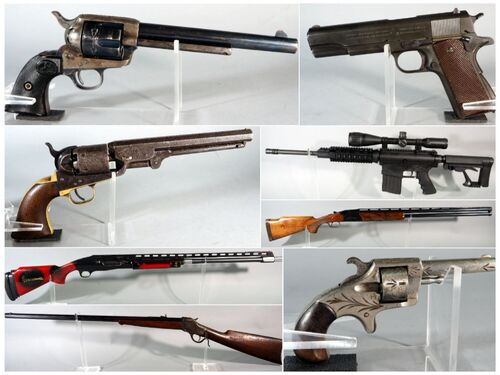 Aim To Win Firearm And Sportsman Auction featured photo