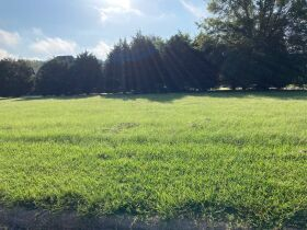 Grenada, MS Bankruptcy Real Estate Auction - Subdivision Lot featured photo 2