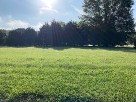 Grenada, MS Bankruptcy Real Estate Auction - Subdivision Lot featured photo 6