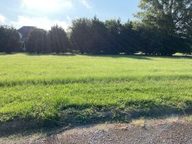 Grenada, MS Bankruptcy Real Estate Auction - Subdivision Lot featured photo 5