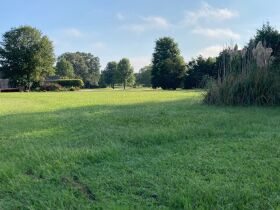 Grenada, MS Bankruptcy Real Estate Auction - Subdivision Lot featured photo 8