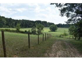 153 +/- ACRES, 3 FARMS, SELLING IN 15 TRACTS; TIMBER & FARM EQUIPMENT featured photo 5