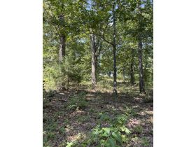 Fulton County, Arkansas - 4.89 Acre Subdivision Lot ~ Selling to the highest bidder! featured photo 3