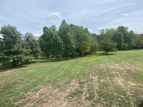 House and 13.78+/- Acres to be Sold at Absolute Multi-Par Auction featured photo 9