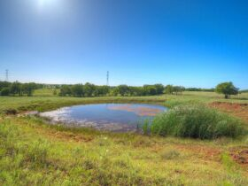 LOGAN COUNTY, OK -MULHALL AREA  LAND AUCTION - 86 +/- acres- W/ HWY 77 FRONTAGE-OFFERED IN CHOICE TRACTS AND COMBINATIONS featured photo 2