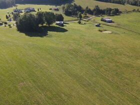 House & 65 +/- Acres at Absolute Online Auction featured photo 11