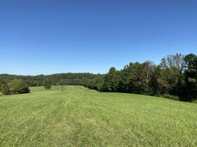 House & 65 +/- Acres at Absolute Online Auction featured photo 4