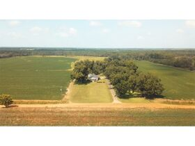 Estate Auction   168 ± Acres & Home   Southern Turner Co. featured photo 3