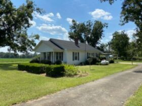 Estate Auction | 168 ± Acres & Home | Southern Turner Co. featured photo 8