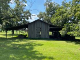 Estate Auction | 168 ± Acres & Home | Southern Turner Co. featured photo 11