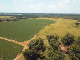 Estate Auction | 168 ± Acres & Home | Southern Turner Co. featured photo 5