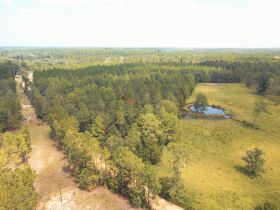 Estate Auction   168 ± Acres & Home   Southern Turner Co. featured photo 11