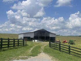 83.84 Acres with Farm House and Barns featured photo 6