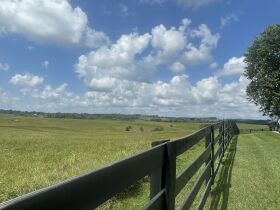83.84 Acres with Farm House and Barns featured photo 7
